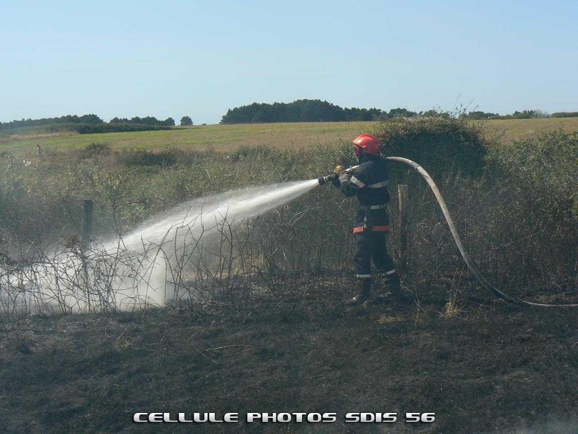 feu-despace-naturel-bangor-le-31-08-09-1.JPG